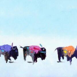 Buffalo Chiefs