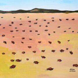 A Whole Lot of Buffalo